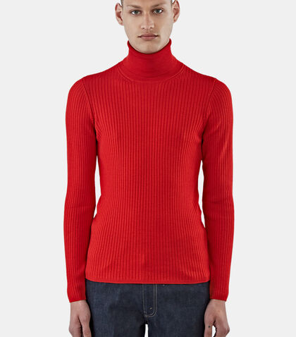 Ribbed Roll Neck Sweater by Aiezen